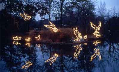 Holiday Lights at the Bronx Zoo, NYC